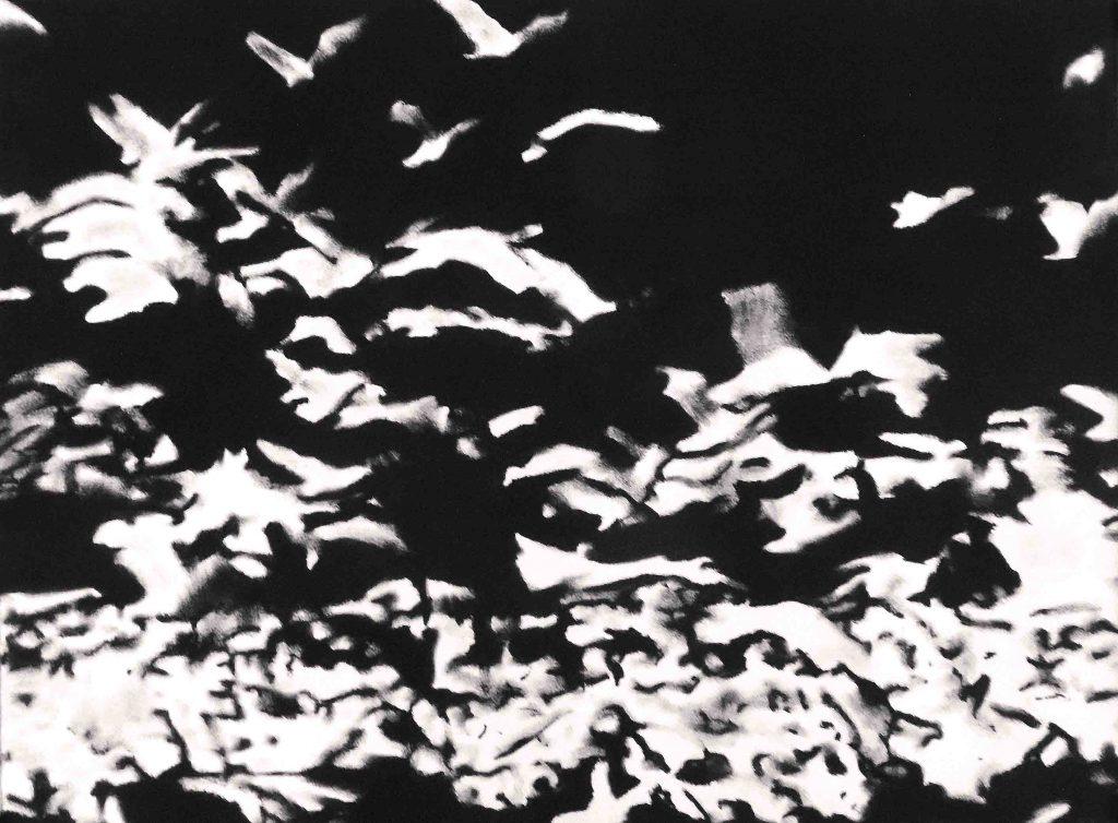 EXODE III, 2017, Pastel sur papier Arches, 50 x 65 cm